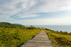 Skyline Trail boardwalk Stock Image