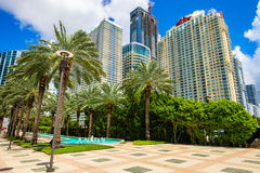 Downtown Miami. Skyline view of the Brickell area in downtown Miami with palm trees and skyscrapers Royalty Free Stock Image