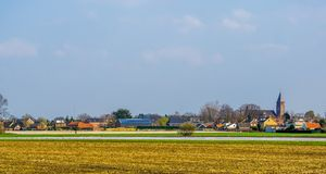 Skyline of the village of Rucphen, a small rural village in North Brabant, The Netherlands, view from the pasture. The skyline of the village of Rucphen, a small stock photo