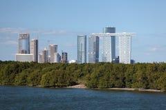 Skyline von Abu Dhabi- und Mangrovenwald Lizenzfreies Stockbild