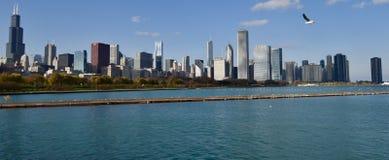 Skyline von Adler Lizenzfreie Stockfotos