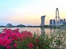Skyline von Gärten durch die Bucht- und Singapur-Stadt lizenzfreie stockfotografie