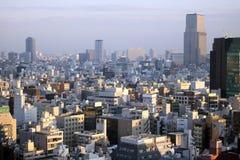 Skyline von Tokyo während eines smoggy Sommertages lizenzfreie stockfotos