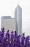 Skylinedi Chicago Stockfoto