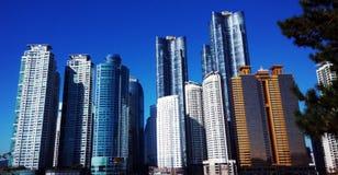 Skylines em Coreia Imagem de Stock Royalty Free