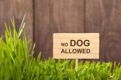 Skylt ingen hund som är tillåten på gräsbakgrund av wood plankor, Royaltyfria Bilder