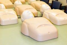 Skyltdockor i cpr-utbildning klassificerar cardiopulmonary resuscitation Royaltyfri Bild