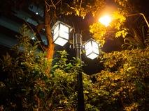 Skymning för träd för lampljusgata arkivfoton