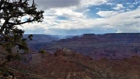 Skymning i grandet Canyon arkivfoto