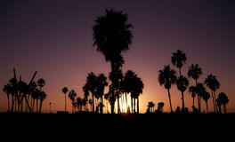 Skymning i Los Angeles arkivfoton