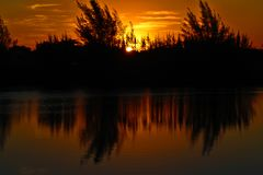 Skymning i skogen reflekterad i dammet arkivbild
