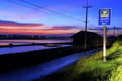Skymning på det salta fältet i Thailand Royaltyfri Bild