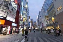 Skymning som skjutas av Akihabara som shoppar område Royaltyfria Foton