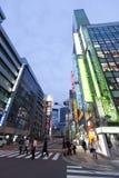 Skymning som skjutas av Akihabara som shoppar område Royaltyfri Bild