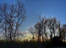 Skymningsolnedgångsikter till och med vinterträdfilialer vid Opryland längs Shelby Bottoms Greenway och det naturliga området Cum royaltyfri fotografi