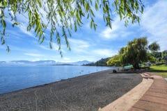Skymt av den sjöRanco stranden i regionen för Los Lagos royaltyfria bilder
