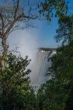 Skymt av Victoria Falls inramade vid träd Royaltyfri Foto