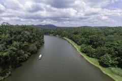 Skyrail Cablewayrösen Australien arkivbild