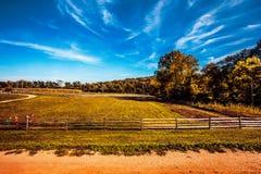 Skys claro en el prado Fotografía de archivo libre de regalías