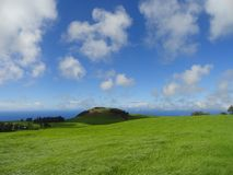 Skys surpreendentemente azul sobre a ondulação de Emerald Grasslands Central Island na ilha grande de Havaí Fotos de Stock Royalty Free
