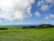 Skys surpreendentemente azul sobre a ondulação de Emerald Grasslands Central Island na ilha grande de Havaí Foto de Stock