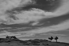 Skyscape Arkivfoto