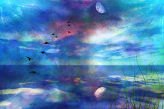Skyscape with Moon. Meadow grasses and birds in flight with Moon Royalty Free Stock Photography