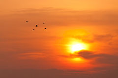 Skyscape view of twilight sun Royalty Free Stock Images