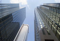 Skyscapers Toronto Royaltyfri Bild