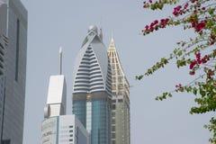 Skyscraber Dubai con el árbol floreciente en el primero plano Fotografía de archivo libre de regalías