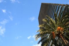 Skyscraper. Modern skyscraper with palm tree and blue sky - could be used as symbol of success Stock Photos