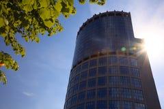 Skyscraper, baranch and sun. Stock Photo
