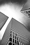 Skyscraper Buildings. Three skyscrapers from a perspective on the ground looking up to the sky in black and white Stock Photography