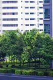 Skyscraper garden. Royalty Free Stock Photos