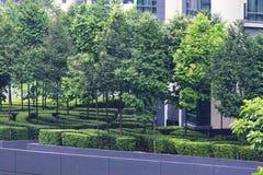 Skyscraper garden. Stock Photography