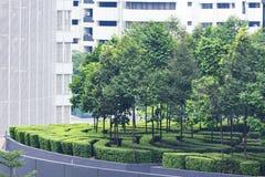Skyscraper garden. Stock Photos