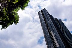 Skyscraper and trees under the cloud and sky. Highrise building and trees under the cloud and sky Stock Image