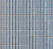 Skyscraper windows. Royalty Free Stock Photo