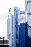 Skyscrapers. Royalty Free Stock Photos