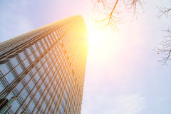 Skyscrapers of the city Stock Photography