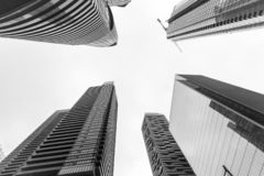 Skyscrapers in the city, Toronto. Low-angle shot of skyscrapers in the downtown core of the city of Toronto, pictured on a foggy day royalty free stock photography