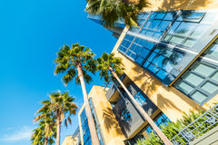 Skyscrapers in downtown San Diego. California royalty free stock images