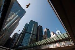 Skyscrapers in hongkong Stock Images