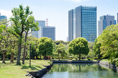 Skyscrapers and japanese garden Royalty Free Stock Photo