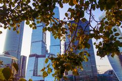 Skyscrapers of Moscow at sunset in autumn Stock Photography