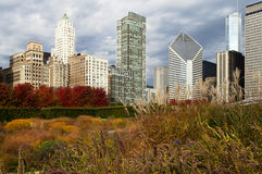 Skyscrapers Of Chicago In Autumn Royalty Free Stock Photo