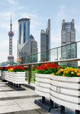 Skyscrapers and outdoor flower pots in downtown, Shanghai Stock Images