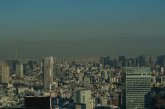 Skyscrapers Seen from TOCHO Tokyo Metropolitan Government Building in Tokyo Royalty Free Stock Photography