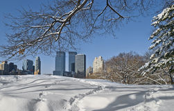 Skyscrapers and Snow Stock Image