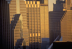 Skyscrapers at Sunrise, Chicago, Illinois Royalty Free Stock Photo